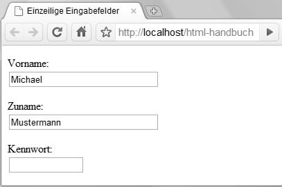 Einzeilige Eingabefelder Webkompetenz